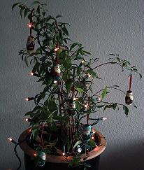 La Navidad animará las ventas en Europa exceptuando a España