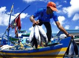 economista-y-pescador-1